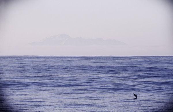 Впервые после выхода из Владивостока видна земля — Алеутские острова