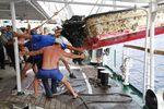 О находке было сообщено исследовательскому центру Гавайского университета, по договоренности с которым экипаж «Паллады» и отслеживал дрейфующий мусор