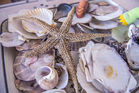 Всемирный день моря отметили в Дальрыбвтузе